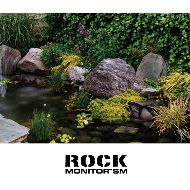 Rapallo   Paradigm Rock Monitor